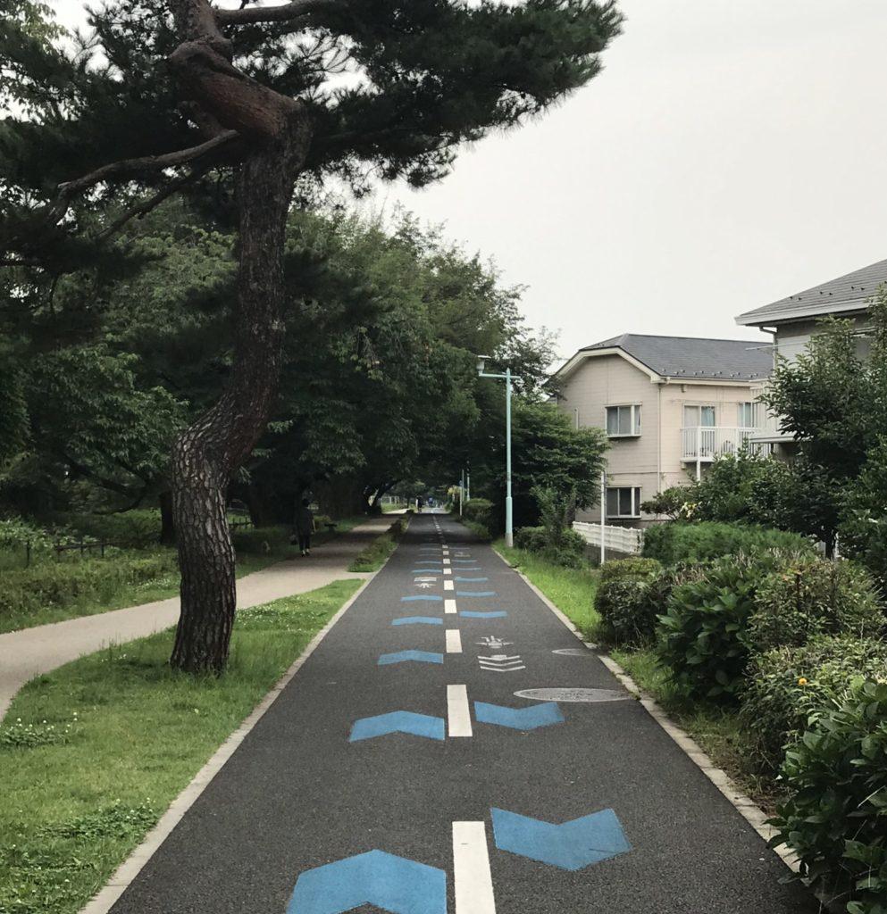練習コースの多摩湖自転車道