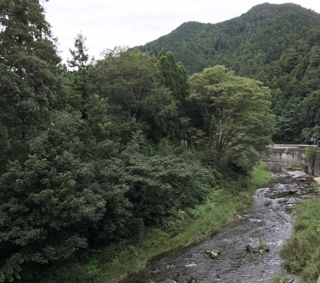 秩父への沿道の河川