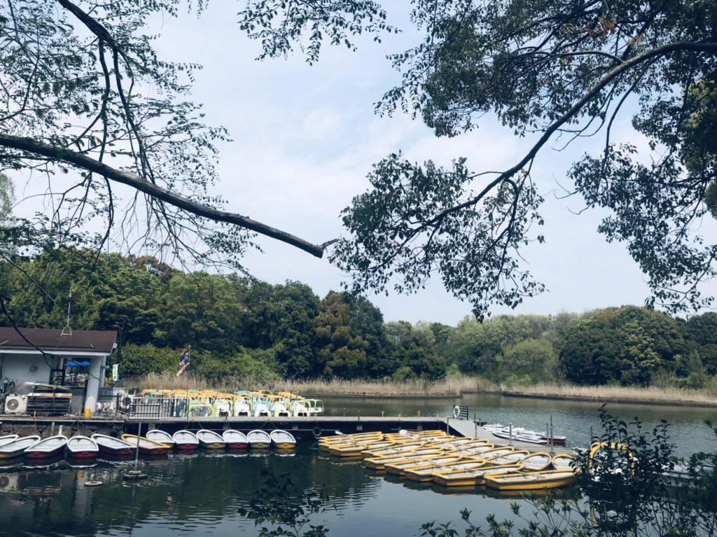 昭和記念公園「水のコース」は水鳥の池を周る