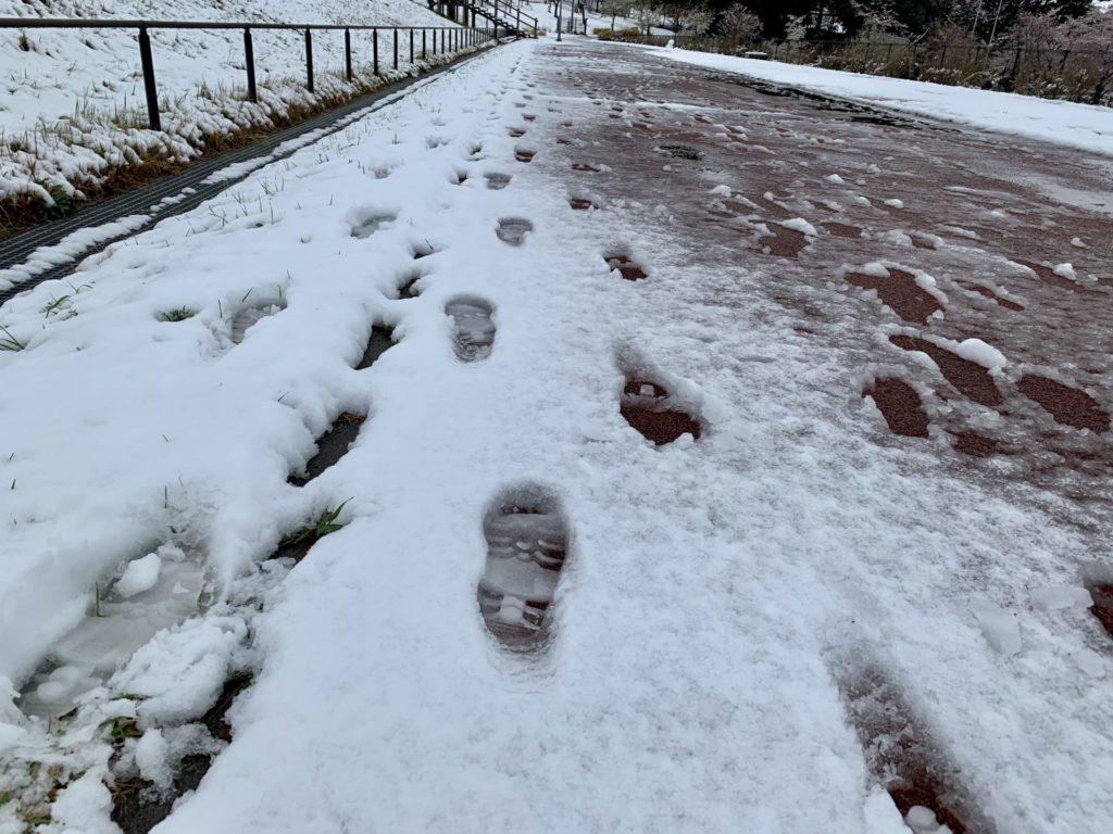 冬の狭山公園をジョギング