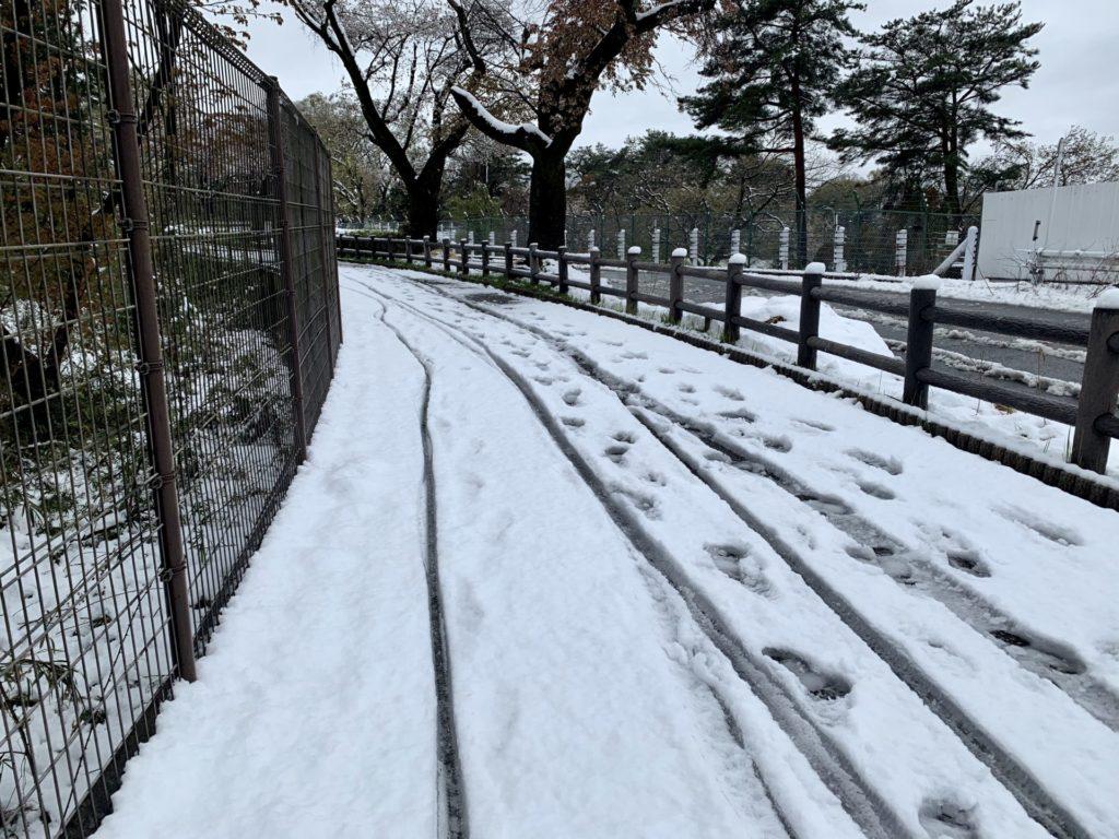 多摩湖自転車道を雪上ラン