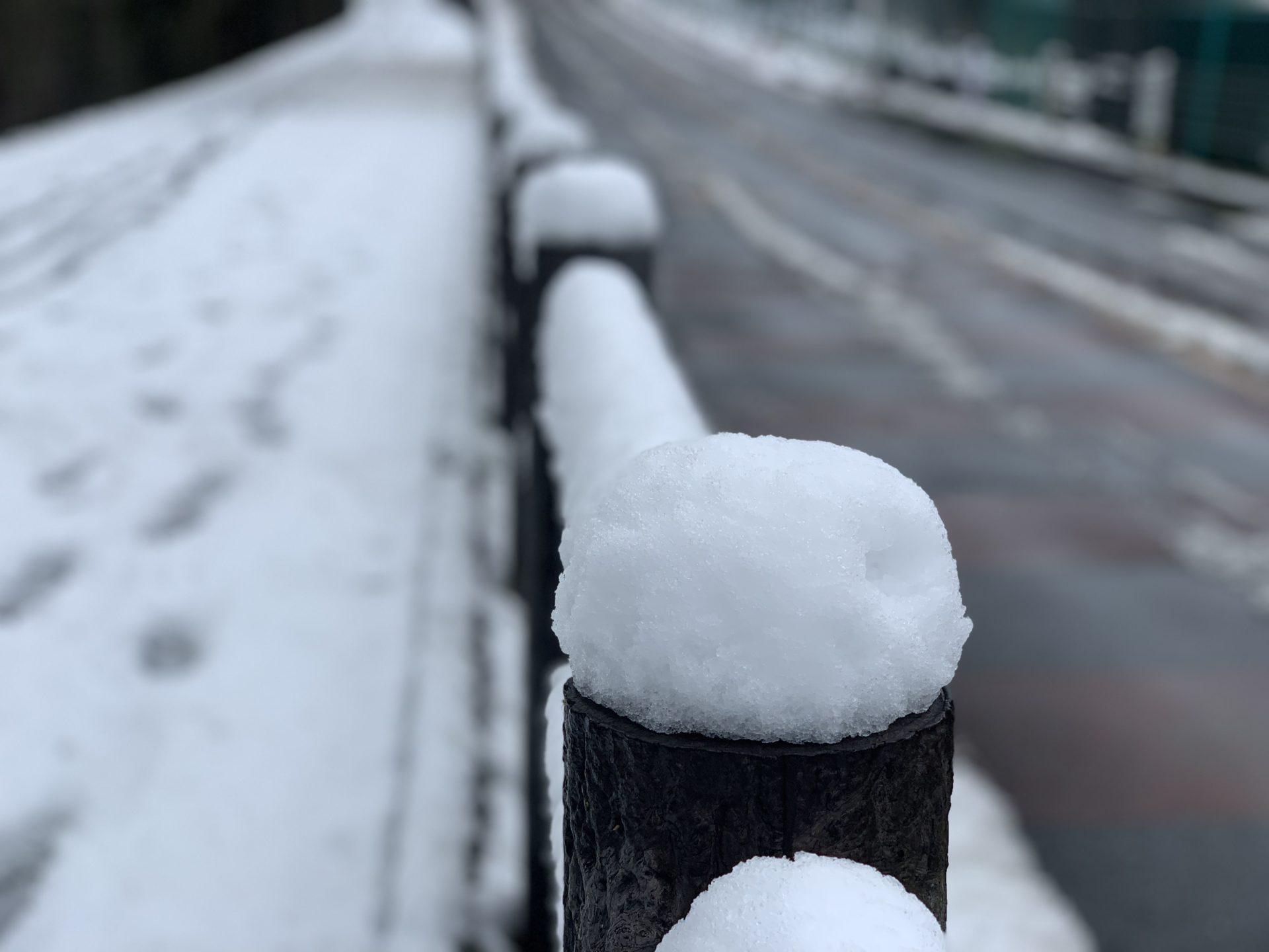 多摩湖自転車道に雪が降った