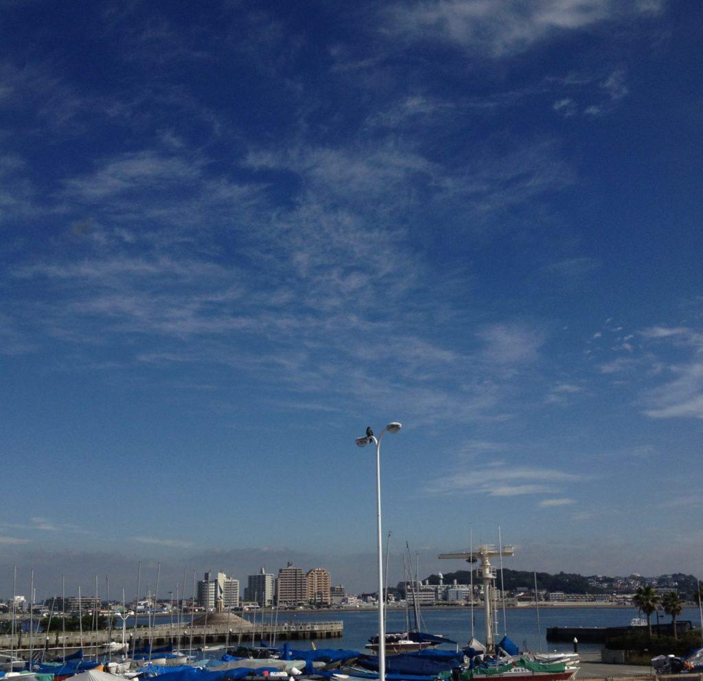 江ノ島から景色