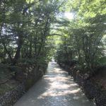 玉川上水を木陰ランニング