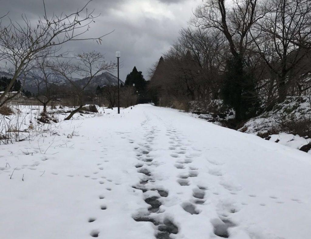 赤谷線サイクリングロードは冬季は雪に埋まる