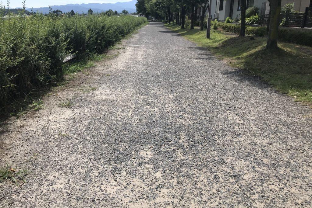 赤谷線サイクリングロードの路面状態