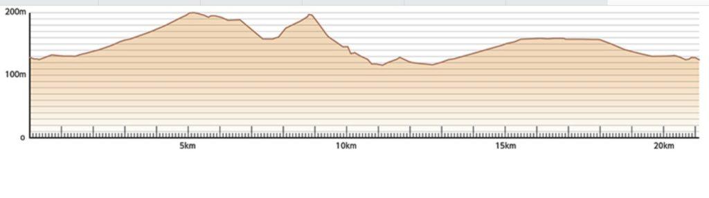 公式HPのラ・フランスマラソン高低図