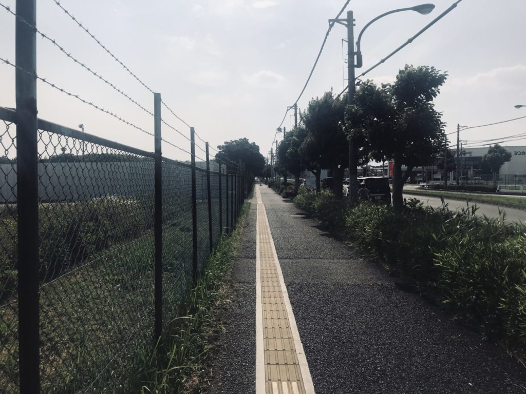 昭和記念公園外周ランの北側