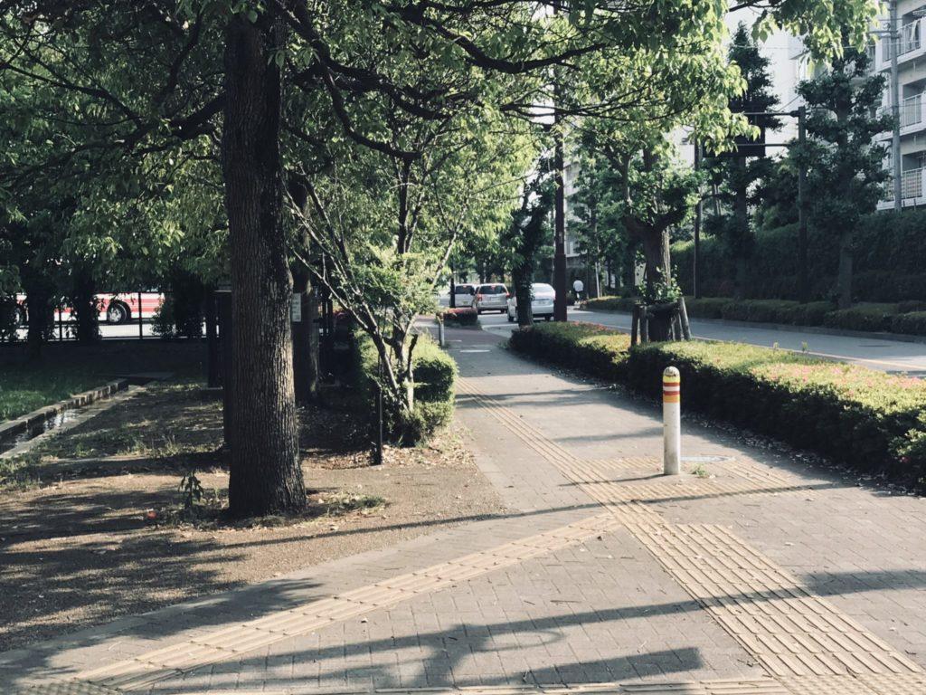 昭和記念公園の外周ラン