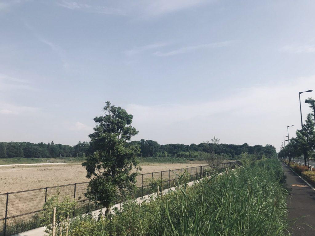 昭和記念公園外周コースの西側