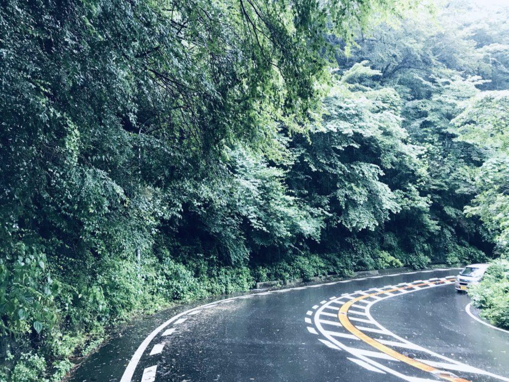 芦ノ湖までラン、コースは路肩が狭し