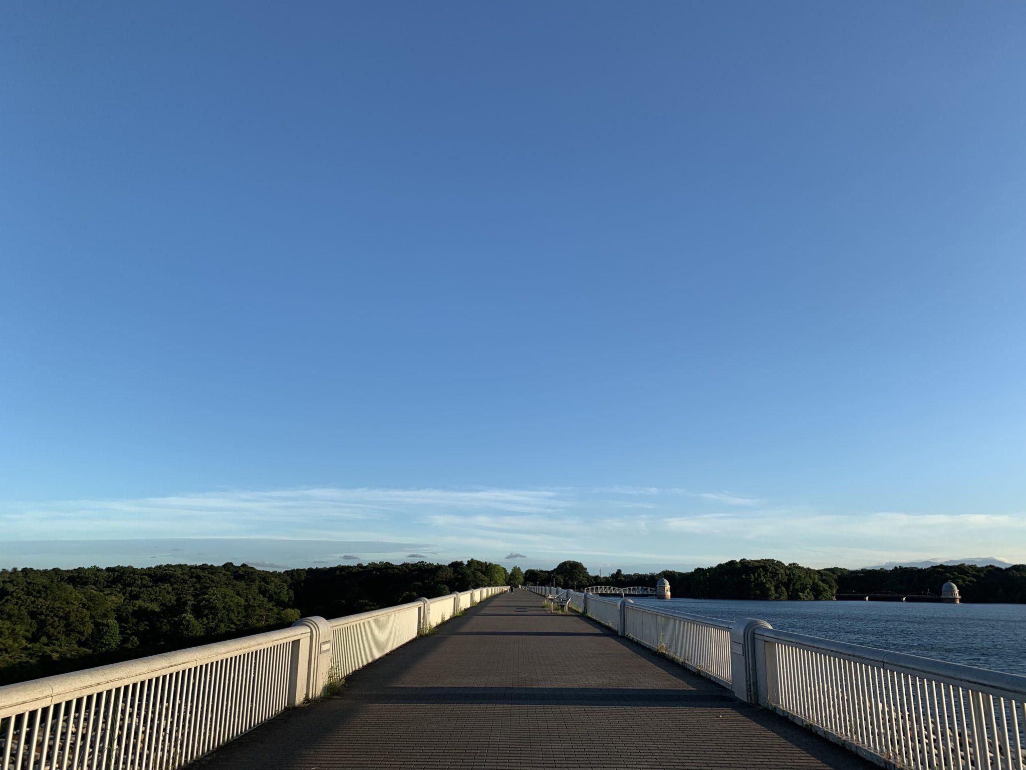 多摩湖自転車道をランニング