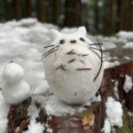 御嶽山を登って見つけた雪トトロ