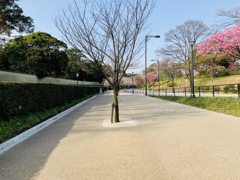 皇居ラン、歩道拡張で走りやすくなる