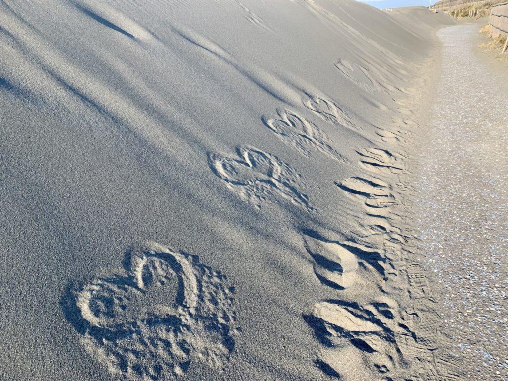 湘南サイクリングロードで見たハートの砂絵