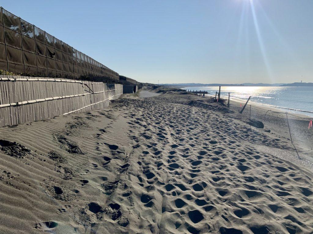 砂の上の不整地ラン