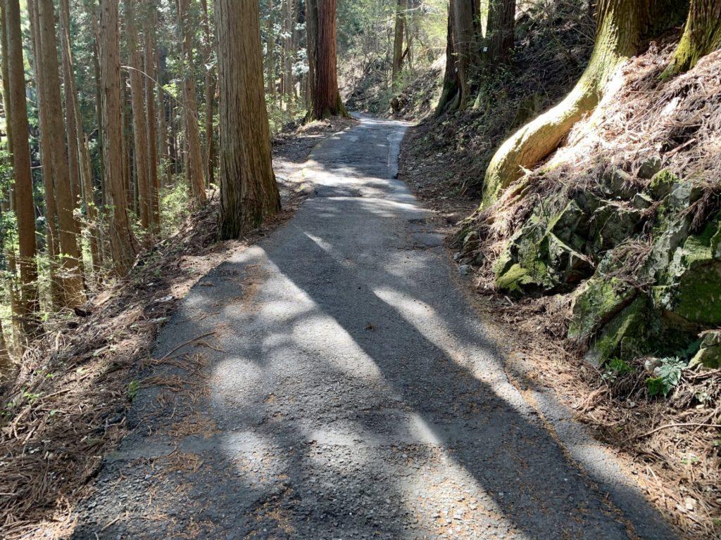 御岳坂道ランの走路は狭く危険