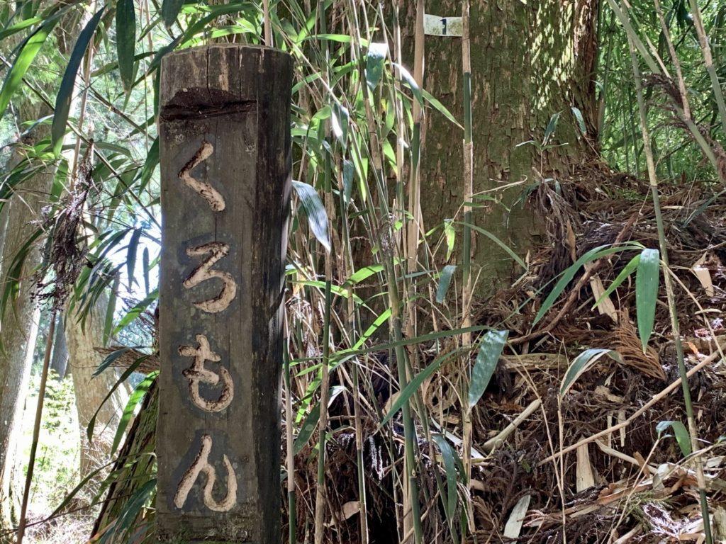 御岳ランニングの走路脇、杉の木に番号あり