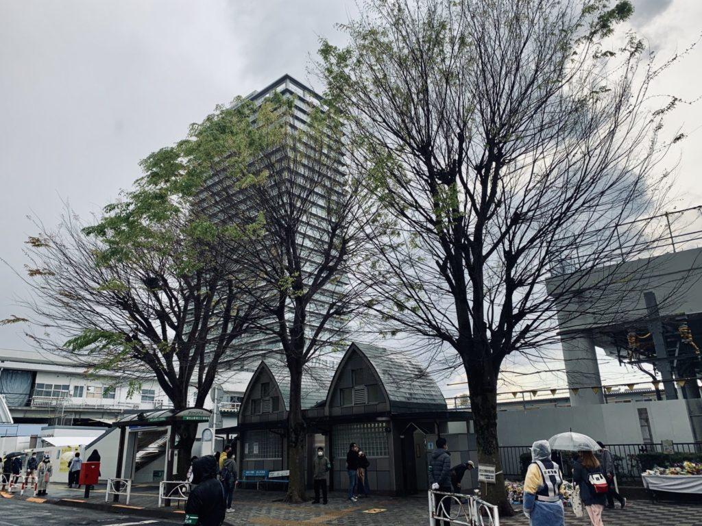 東村山駅東口、志村けんの木
