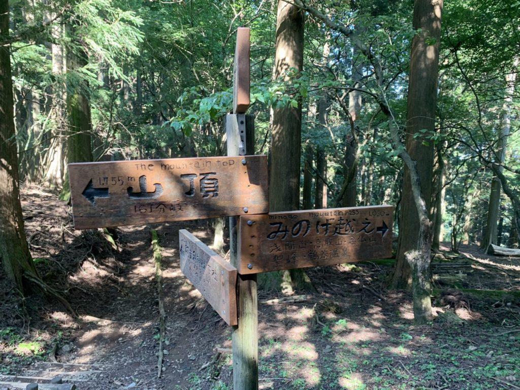 大山から鶴巻温泉へトレラン