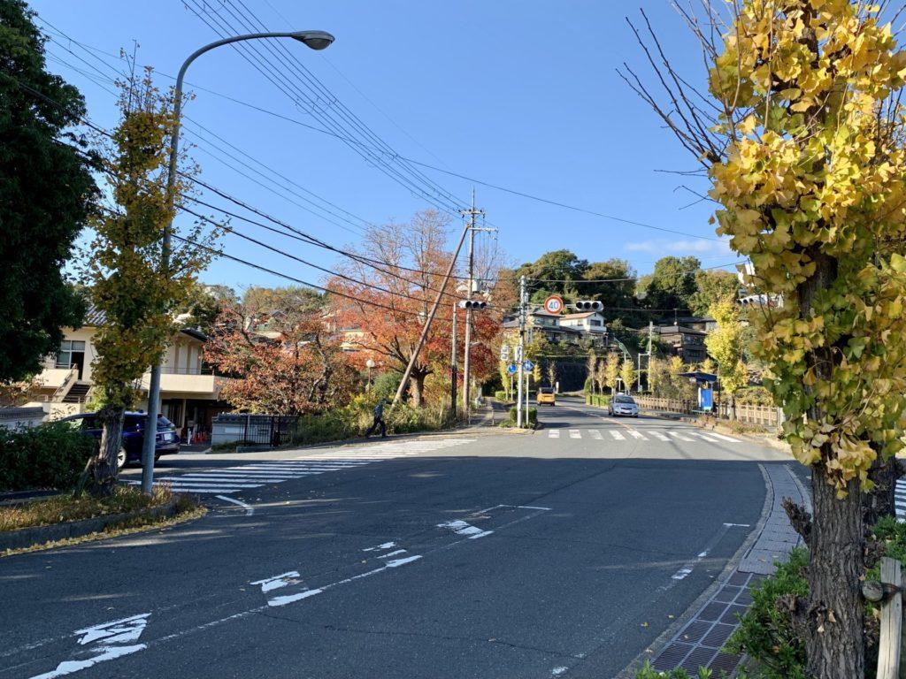 奈良マラソン、ゴール前の急坂