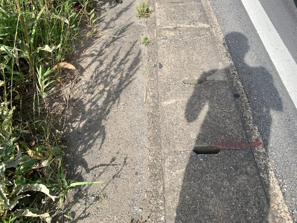 東京駅から成田までロングラン